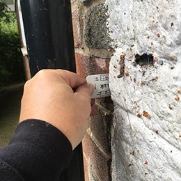 Arboricultural_survey_of_measured_cracked_brickwork