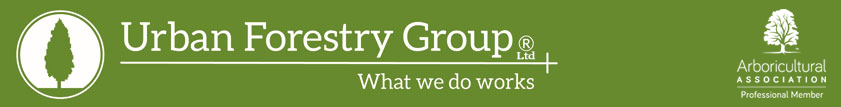 Urban Forestry Group