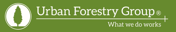 Urban Forestry Website Bann